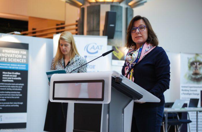 Photo: Lush Prize at the European Parliament