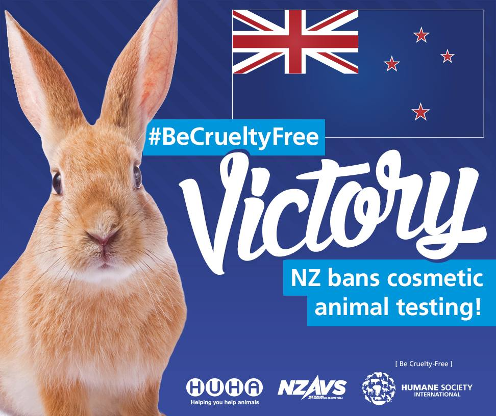 testing on animals should be banned essay