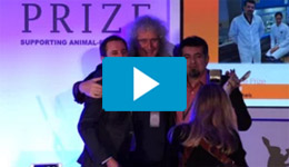 2015-awards-video